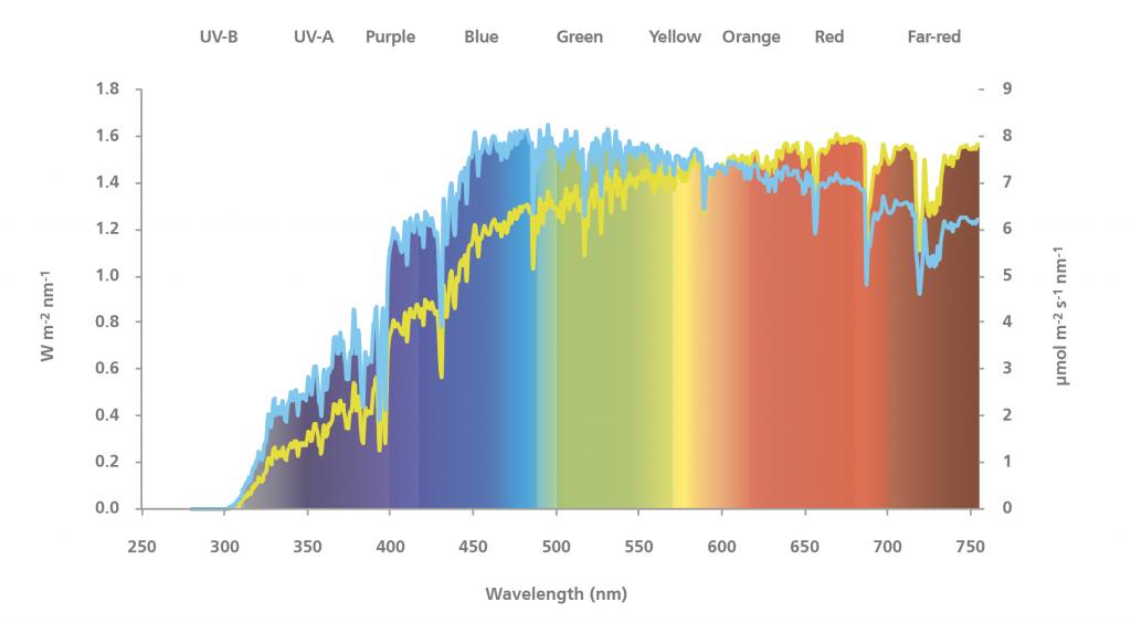 Sunlight-Spectrum-1024x564