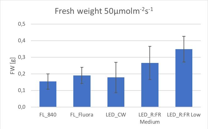 White-LED-Light-Trial-1